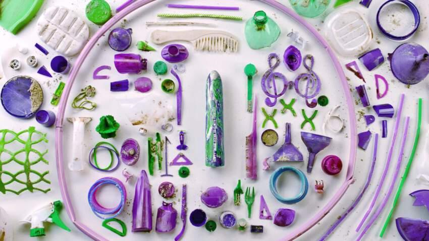 פסולת הים שהוצאה